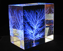 Combination Tree, LED-lit