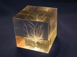 Another cube in natural light
